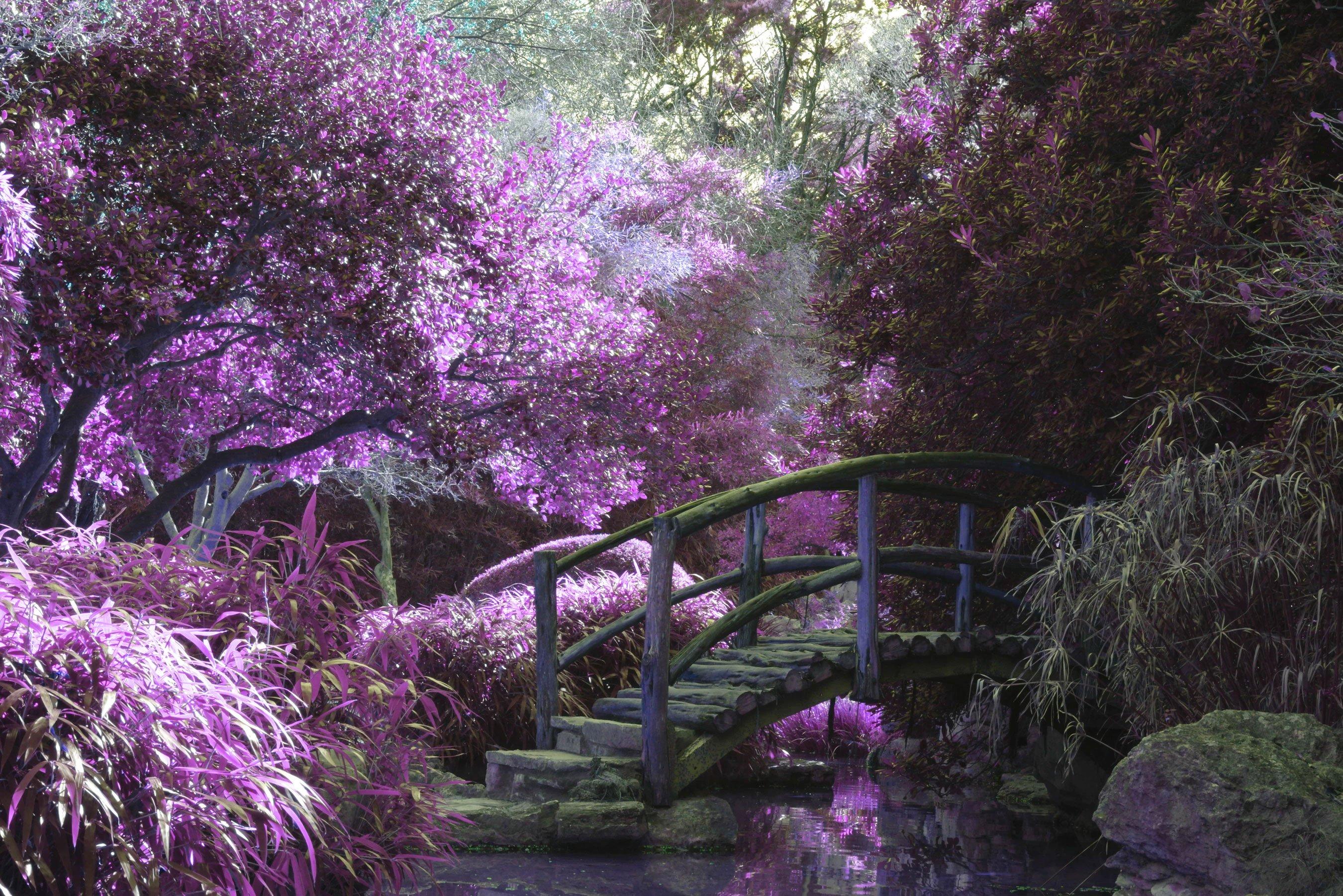 landscaper-gallery-05
